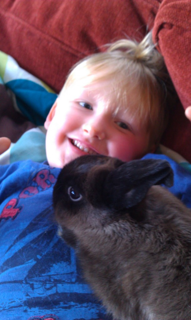 Toddler and Bunny on Homemade, Healthy, Happy
