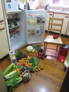 My CSA system (and some momentary chaos!)