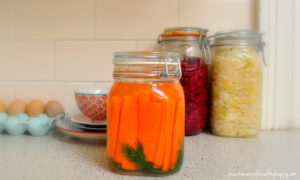 Three Common Fermentation Myths BUSTED!